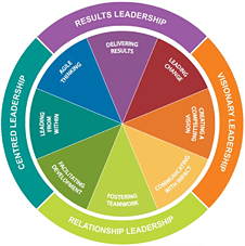 Insights Leadership Disc